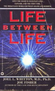 2-Life Between Life Book