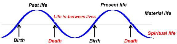 birth-death-cycle