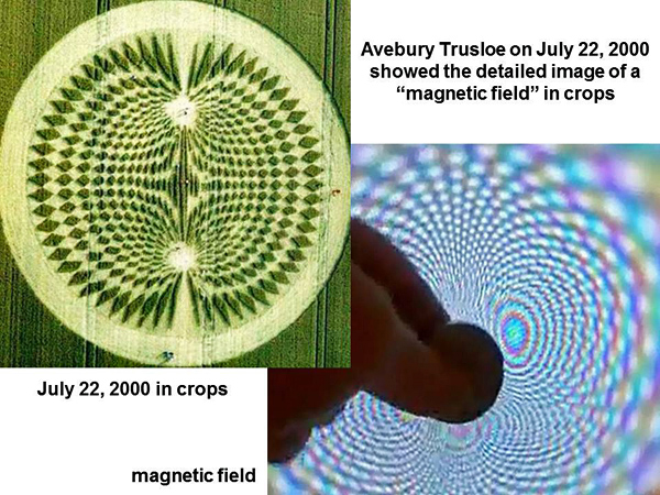 1-magnetic field in crops