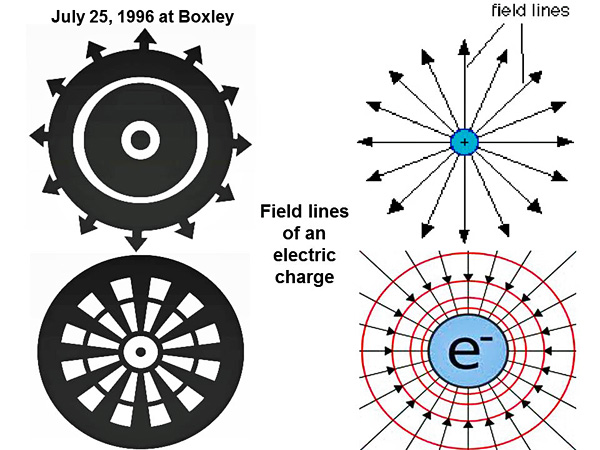 3-field lines of an electric charge