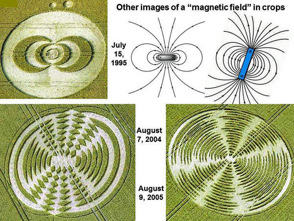 2-magnetic field in crops