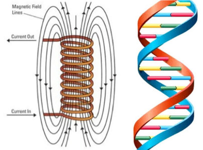 DNA-and-electric-coil-as-electro-magnet-4-post