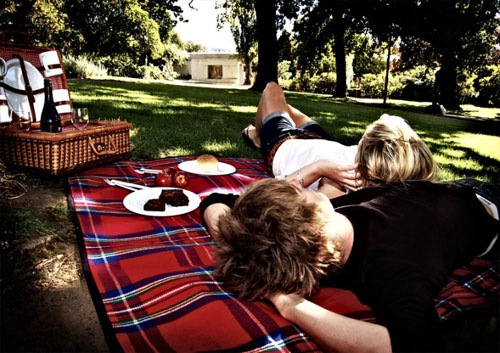 relaxing at a picnic