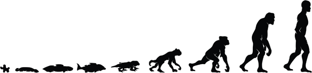 human-evolution-from-amoeba-4-post