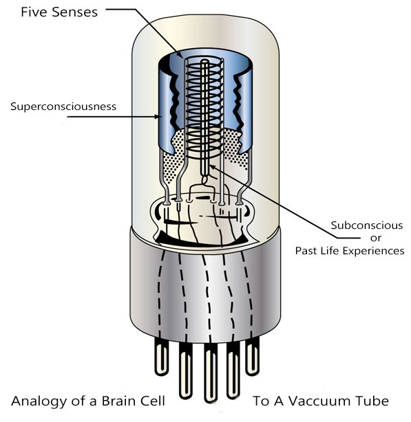 vacuum-tube-analogy-to-brain-cell
