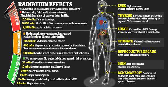 Nuclear-Radiation-Effects chart