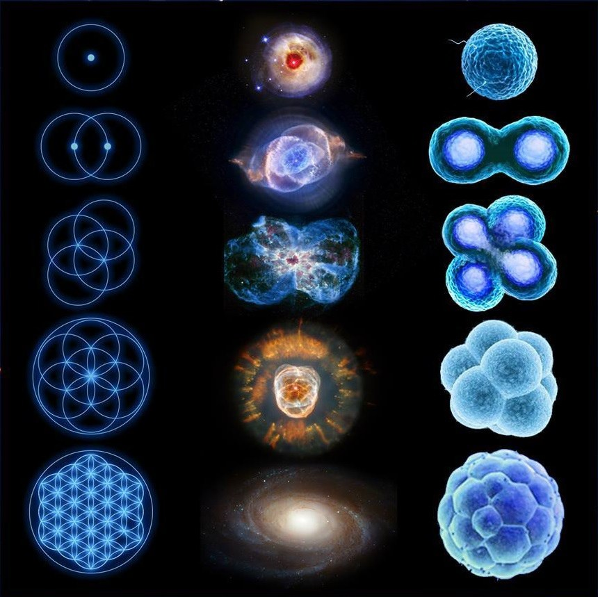 from atom to universe